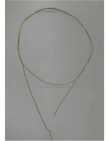 Catgut, CG07 - Green