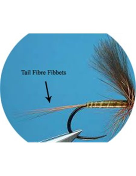 Tail Fibre Fibbets - Golden Olive
