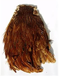 Scalps Hen - Brown, SKS 1