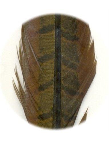 Pheasant tail - Olive
